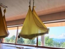 Aerial Yoga Teacher Training in Österreich | yogaguide