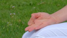 ANANDA Yogalehrerausbildungen 200 und 300 und 500h | yogaguide