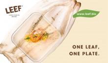 Nachhaltig | Kompostierbares Einweggeschirr aus Palmblättern