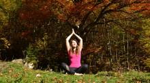 Wald-Yoga in den Kalkalpen | yogaguide