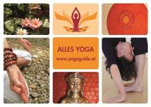 Yogalehrer für Yoga-Onlineklasse gesucht  | yogaguide