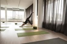 Ausbildungsstart YogalehrerIn & Ayurveda Professional | yogaguide