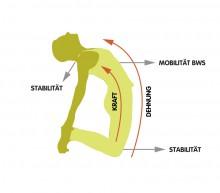 Workshop Vertiefende Anatomie mit Yoga-Techniken Poeckh | yoga guide