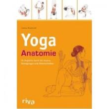 Yoga Anatomie: Yoga für jeden Muskel