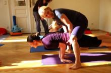 Yogalehrer-/Innen Ausbildung im YOGAZENTRUM PUREYOGA 2020 | yoga guide