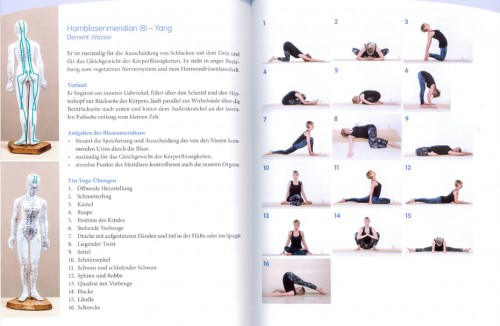 Yogabuch   Mental Yin Yoga (gewinnen)   Yoga Guide